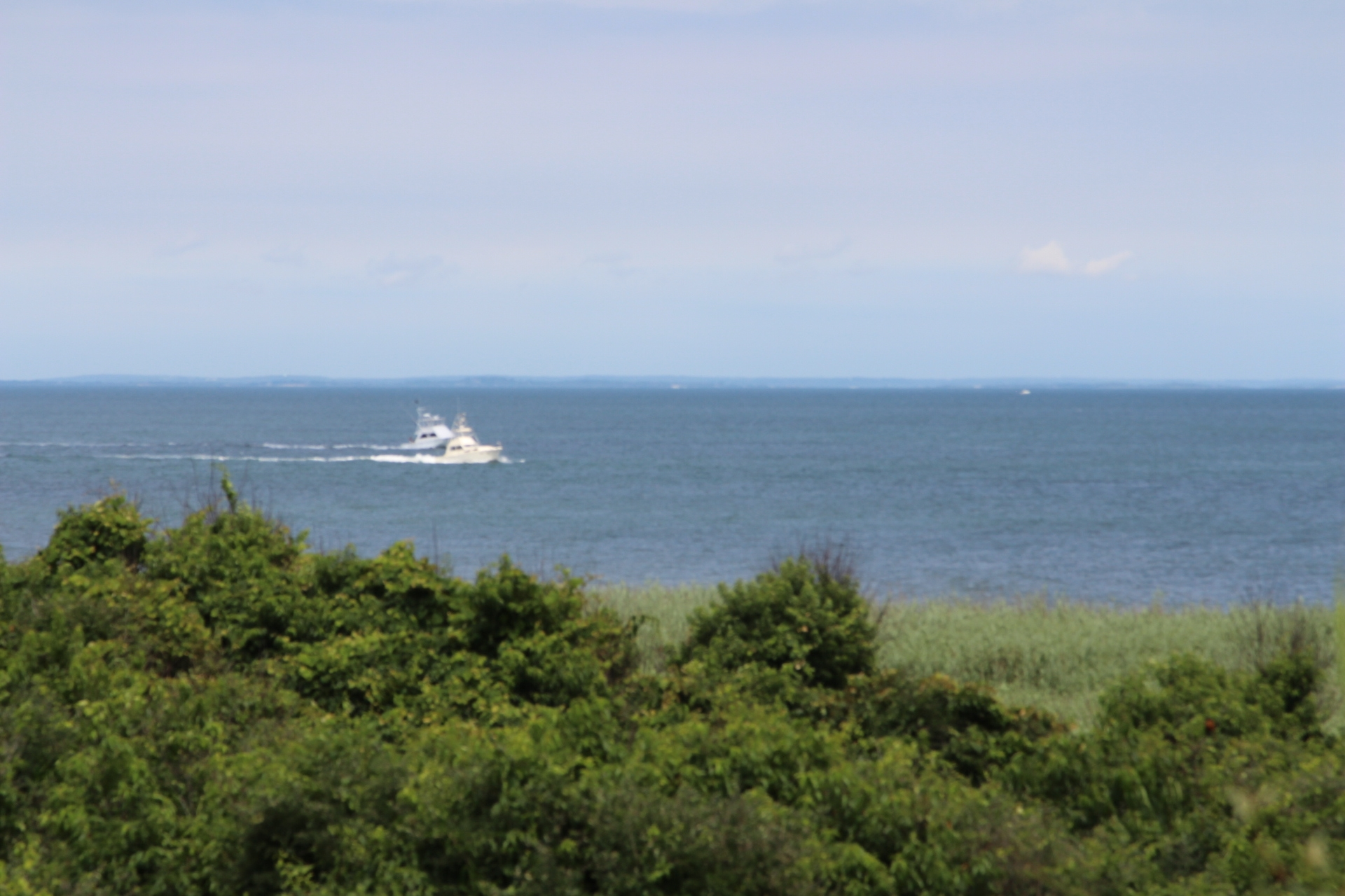 Ocean with shrubbery_boat
