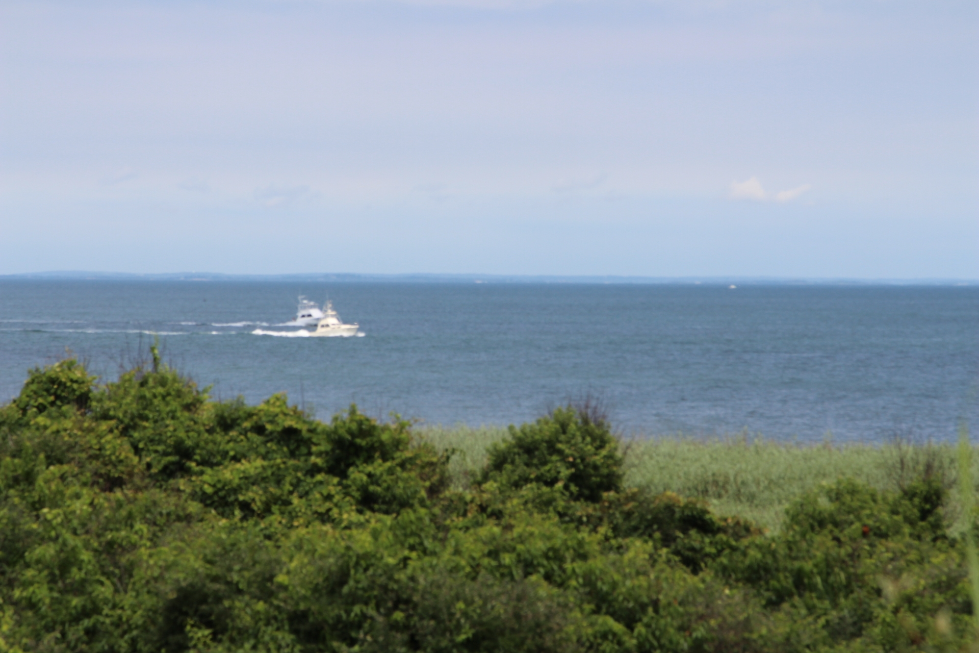 Ocean with shrubbery_boat_2