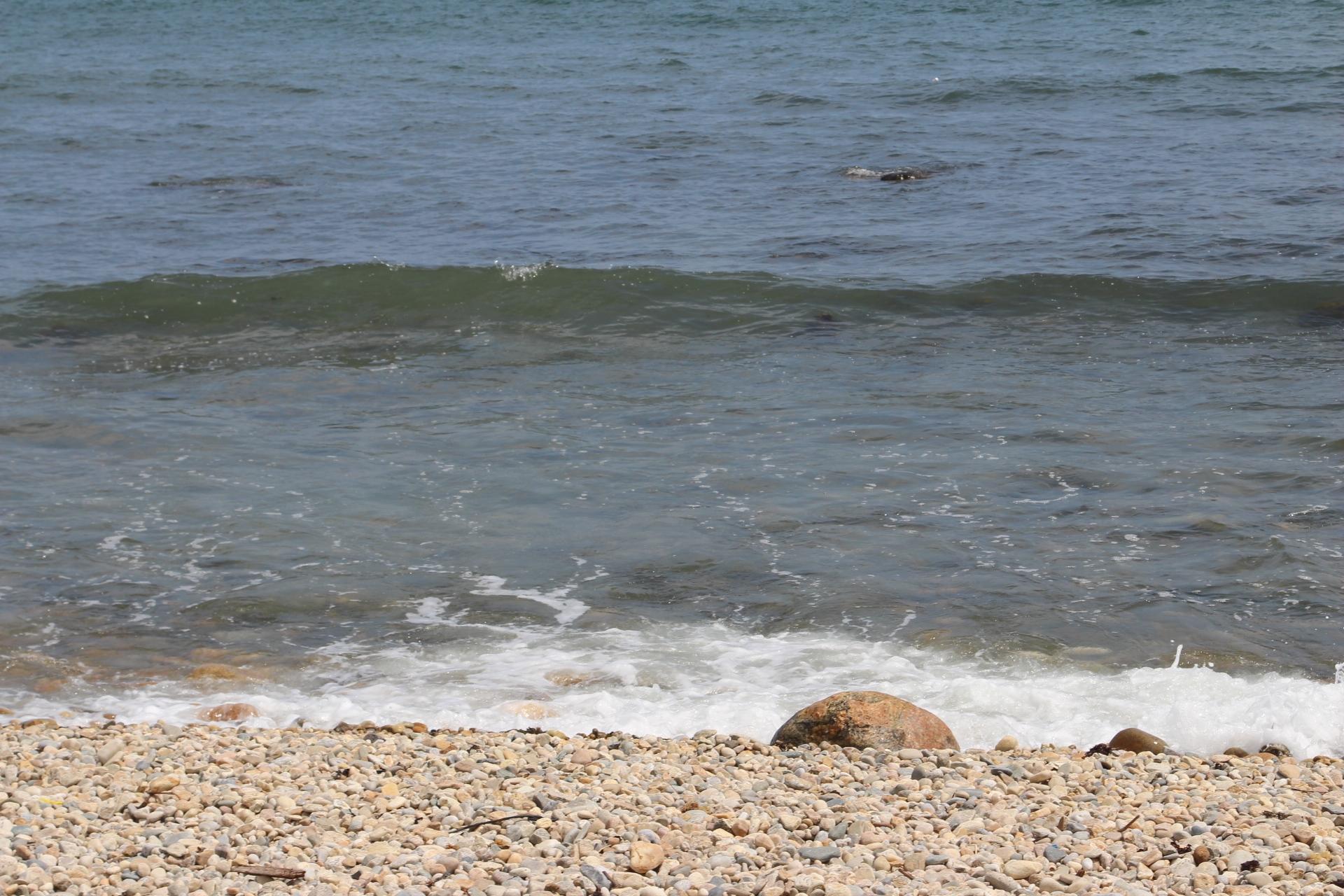 Montauk Seashore_3
