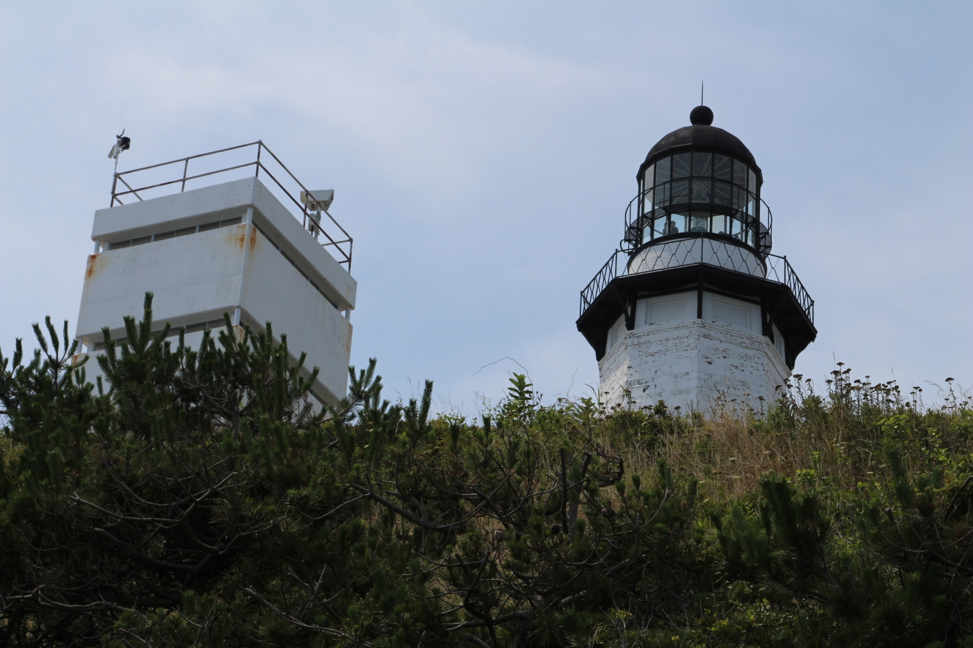 Lighthouse in bushes_1
