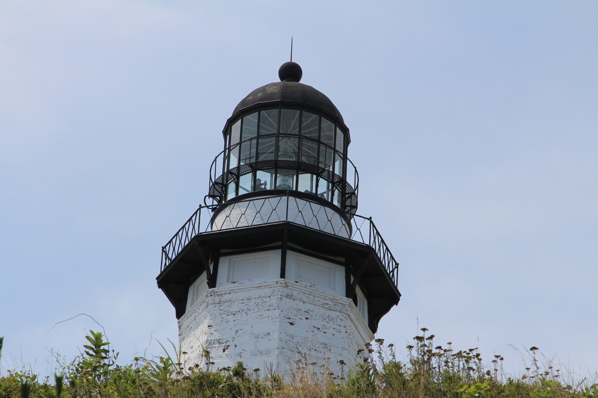 Lighthouse in bushes_5