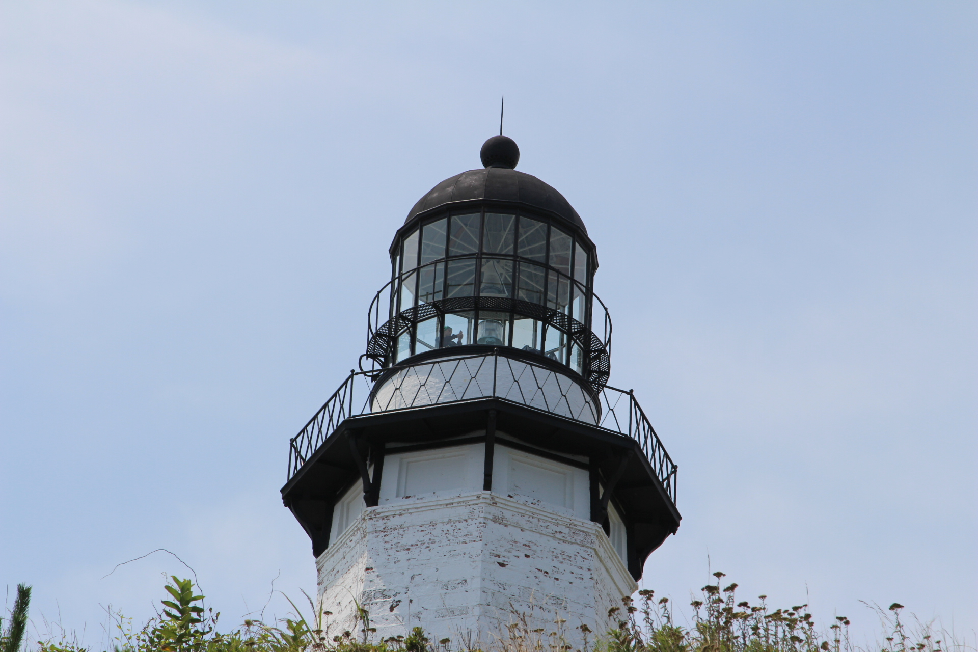 Lighthouse in bushes_6