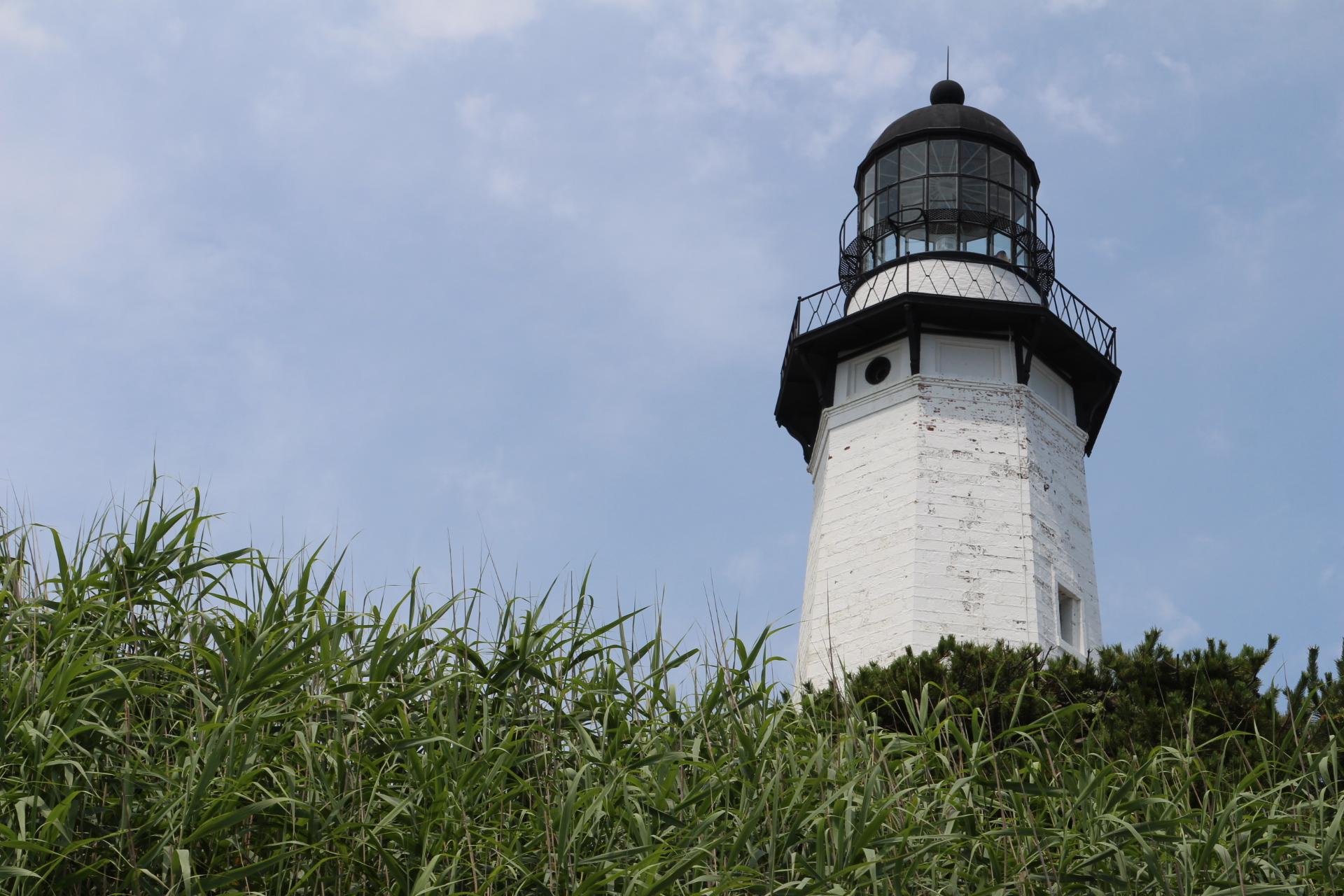 Lighthouse hidden by bushes_6