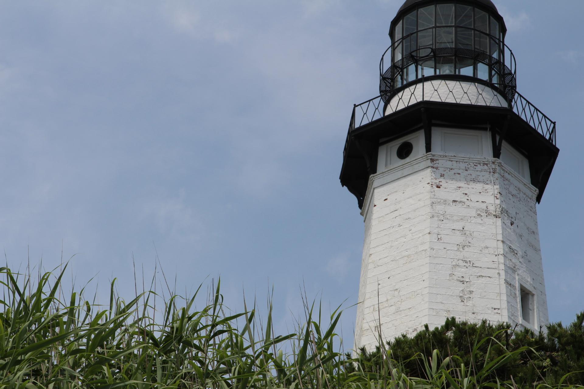 Lighthouse hidden by bushes_10