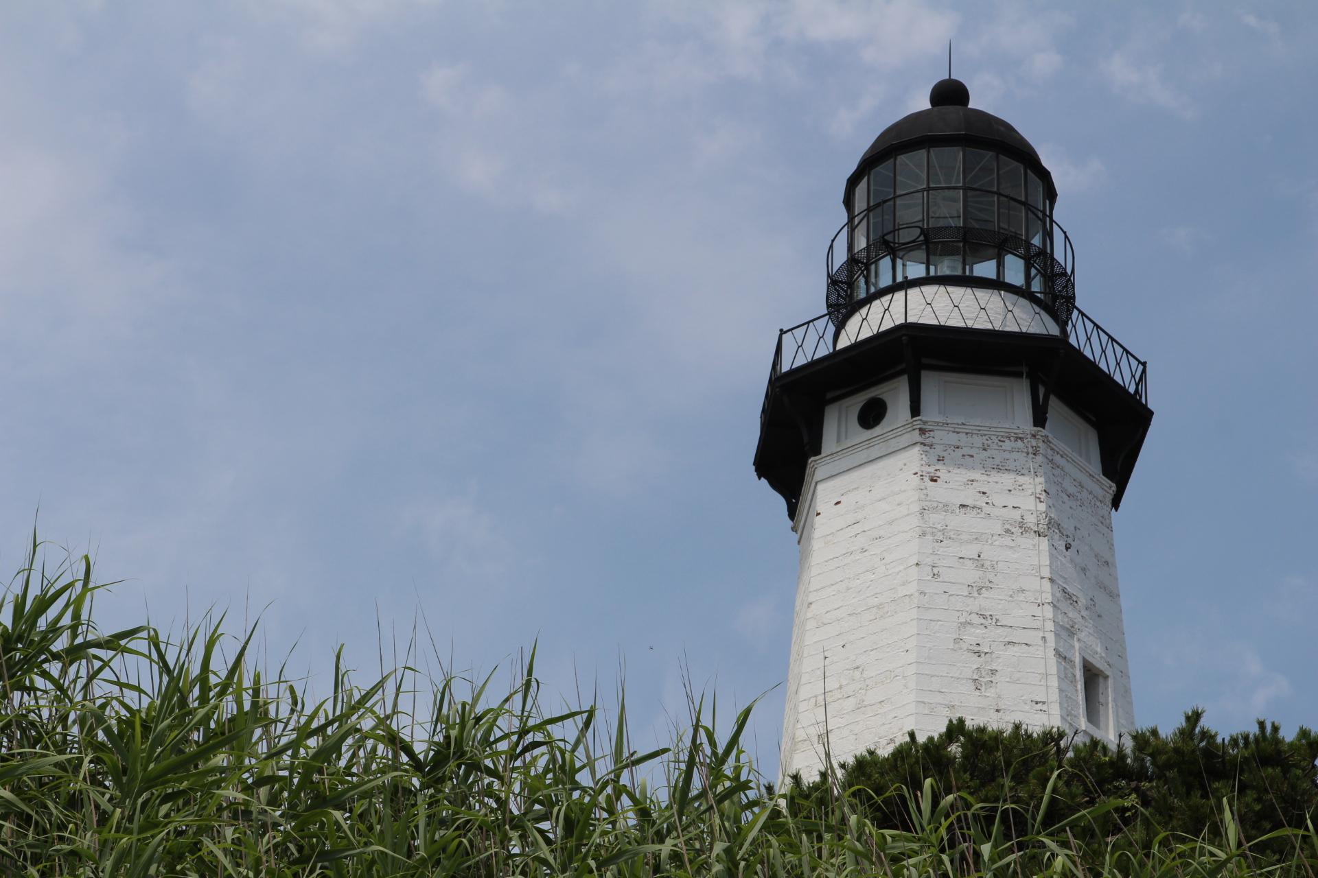 Lighthouse hidden by bushes_11