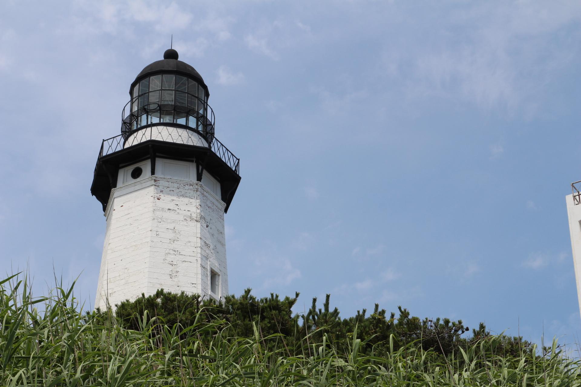 Lighthouse hidden by bushes_13