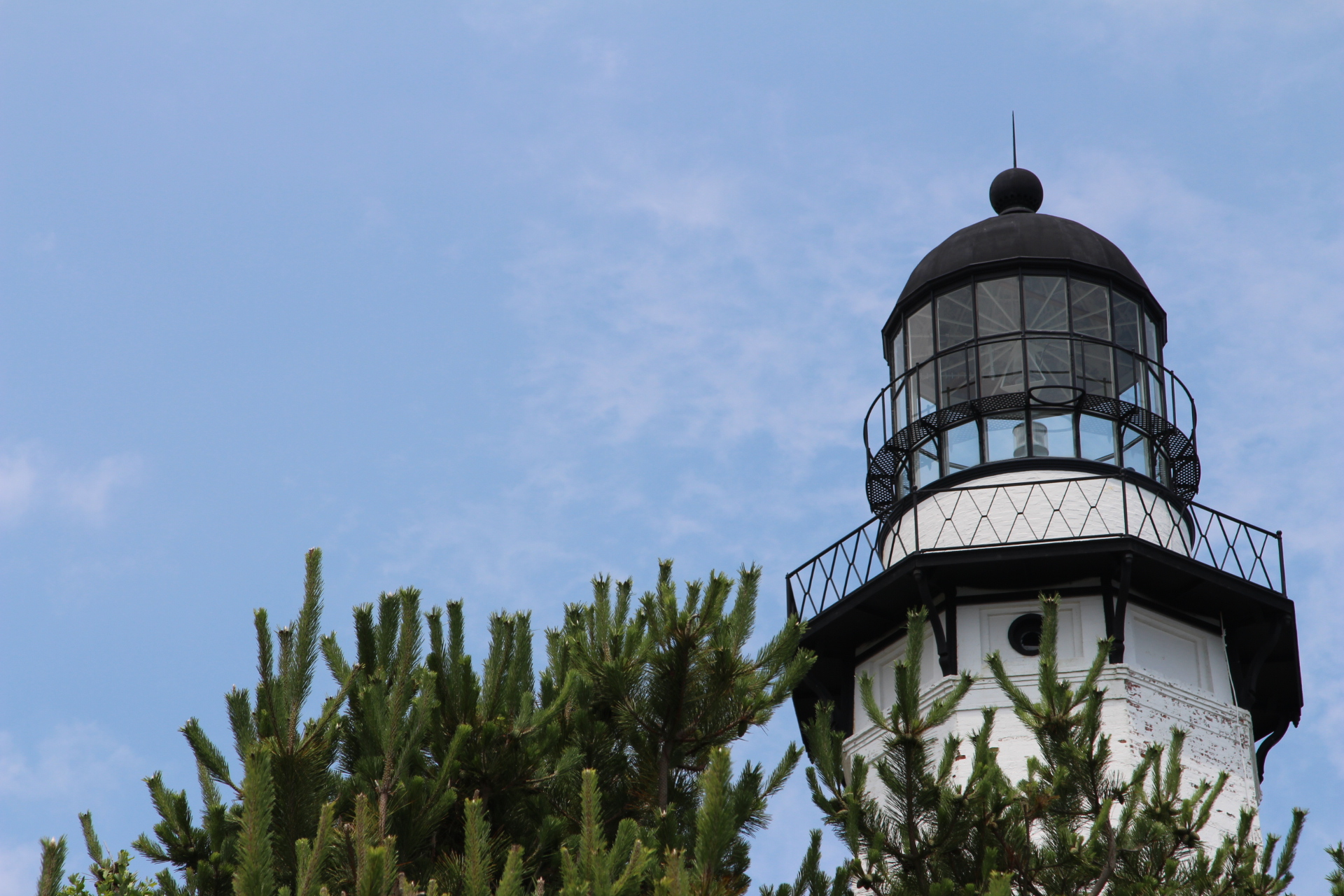 LIghthouse in shrubbery_2