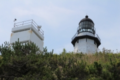 Lighthouse in bushes_2