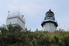Lighthouse in bushes_3