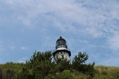 Lighthouse hidden by bushes_16