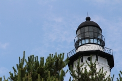 LIghthouse in shrubbery_3
