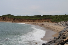 Montauk Seashore_8