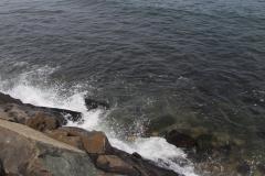 Rocks at waterrs edge_6